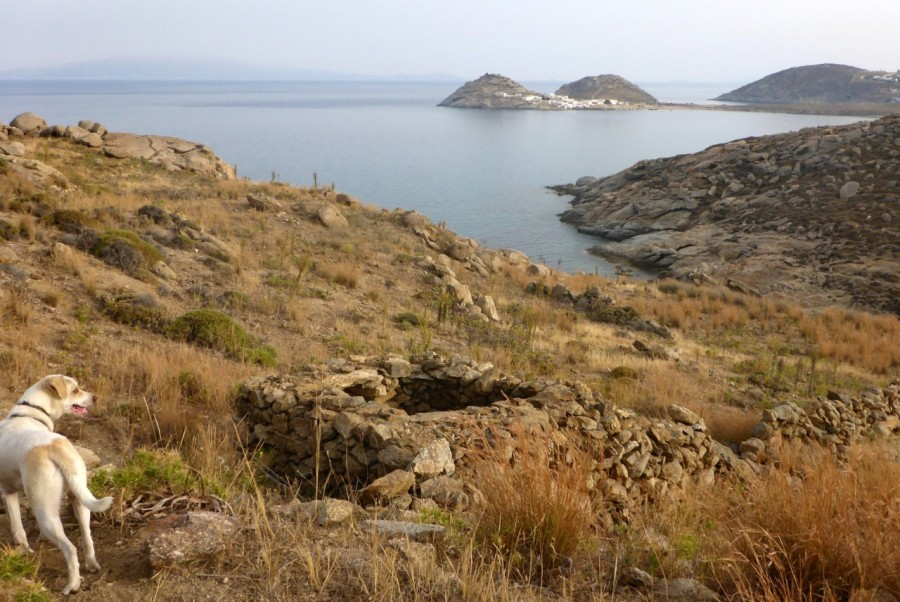 Beautiful landscapes of Mykonos, discovered during a Yummy Pedals tour to Lia Beach