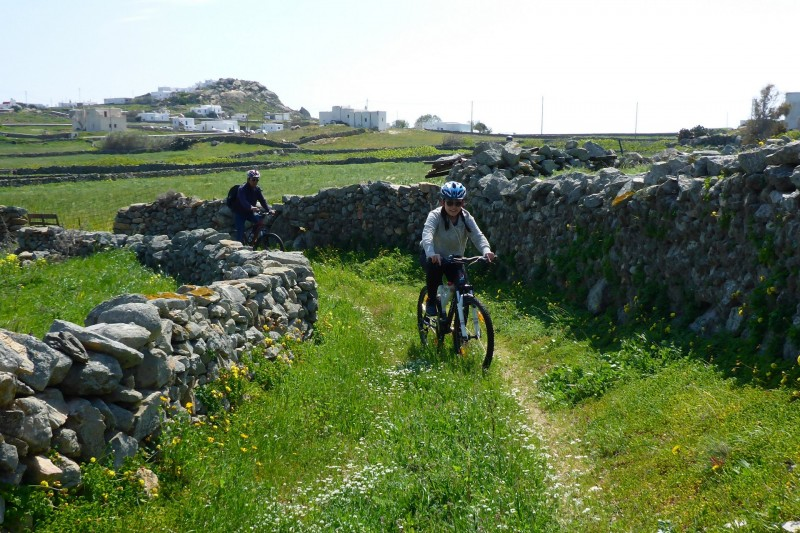 Exploring off the beaten track Mykonos with Yummy Pedals cycling tours, the most sustainable, zero carbon footprint way